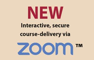 Consulting skills zoom course