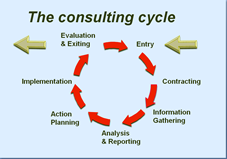 internal consultancy cycle